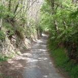 La Riserva Montebello