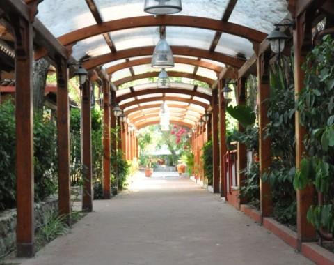 Villaggio Sayonara Club Hotel - Foto 8