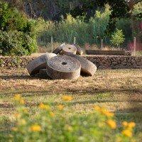 Masseria Mongiò dell'Elefante