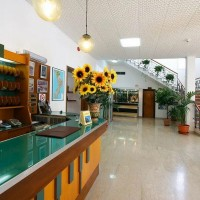 Hotel La Pineta hall details