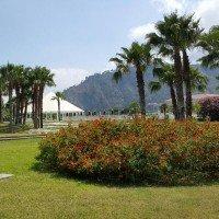 Club Esse Sunbeach gardens