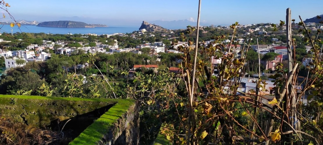 What to do in Ischia in january