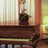 Hotel La Luna hall details